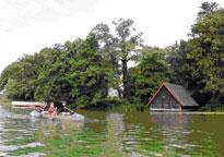 Wasserwandern Kayak Feldberg